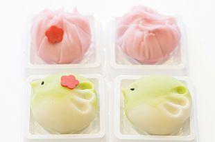 春を先取り!金沢でおしゃれ&かわいい和菓子作り♪