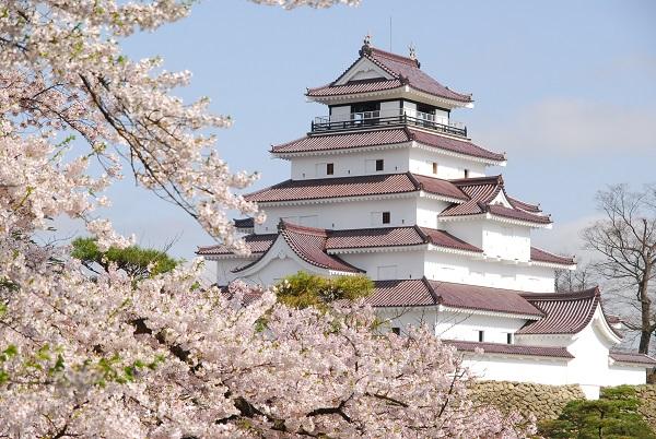 会津若松・鶴ヶ城 約1,000本の桜に包まれる赤瓦の名城でイベントも