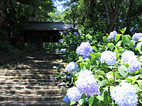 清水寺(群馬県)