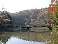 町田薬師池公園四季彩の杜 薬師池