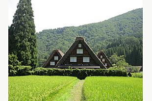 【白川郷・五箇山】二つの世界遺産の集落をゆったり満喫できる日帰りツアー