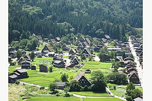 白川郷から高山を贅沢に楽しめるプラチナ日帰りツアー