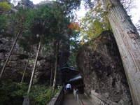 1400年の歴史を持つ、凄い神社