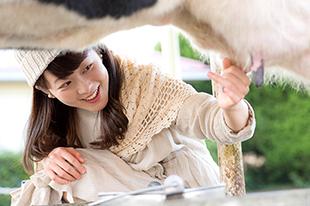 おすすめ酪農体験<br>広大な牧場を、おいしく・楽しく満喫!イメージ